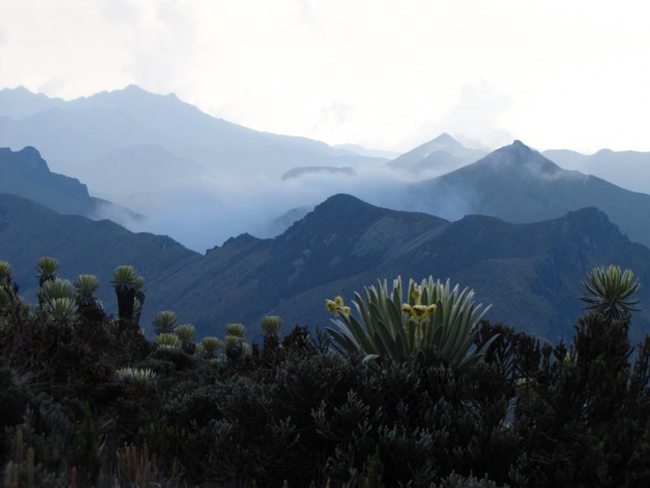 Project Cordillera 2016, Nevado del Tolima Colombia trek, hiking