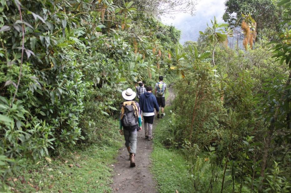 Project Cordillera 2017, Nevado del Tolima Colombia trek, hiking, jungle