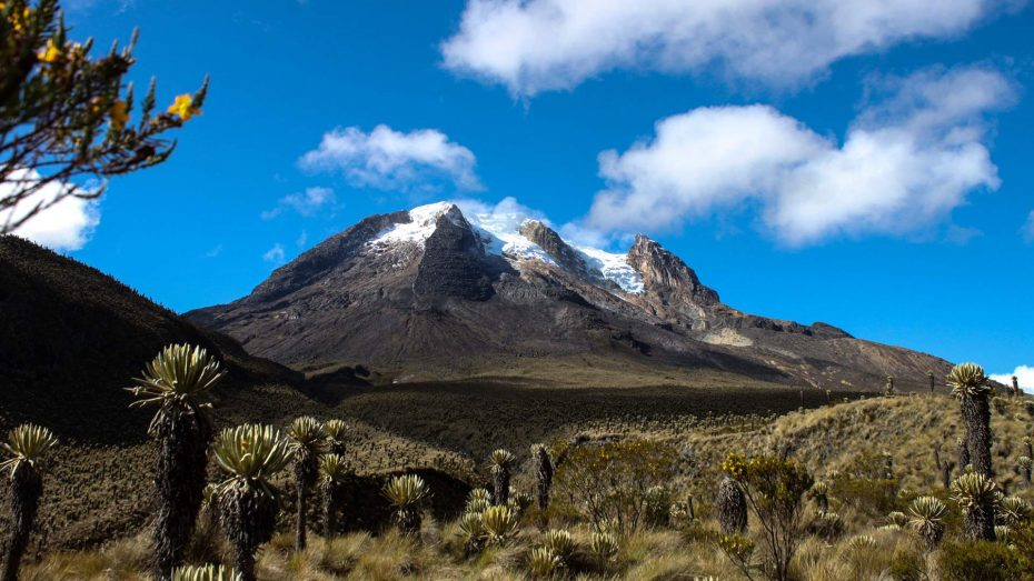 Los Nevados National Park Colombia Project Cordillera